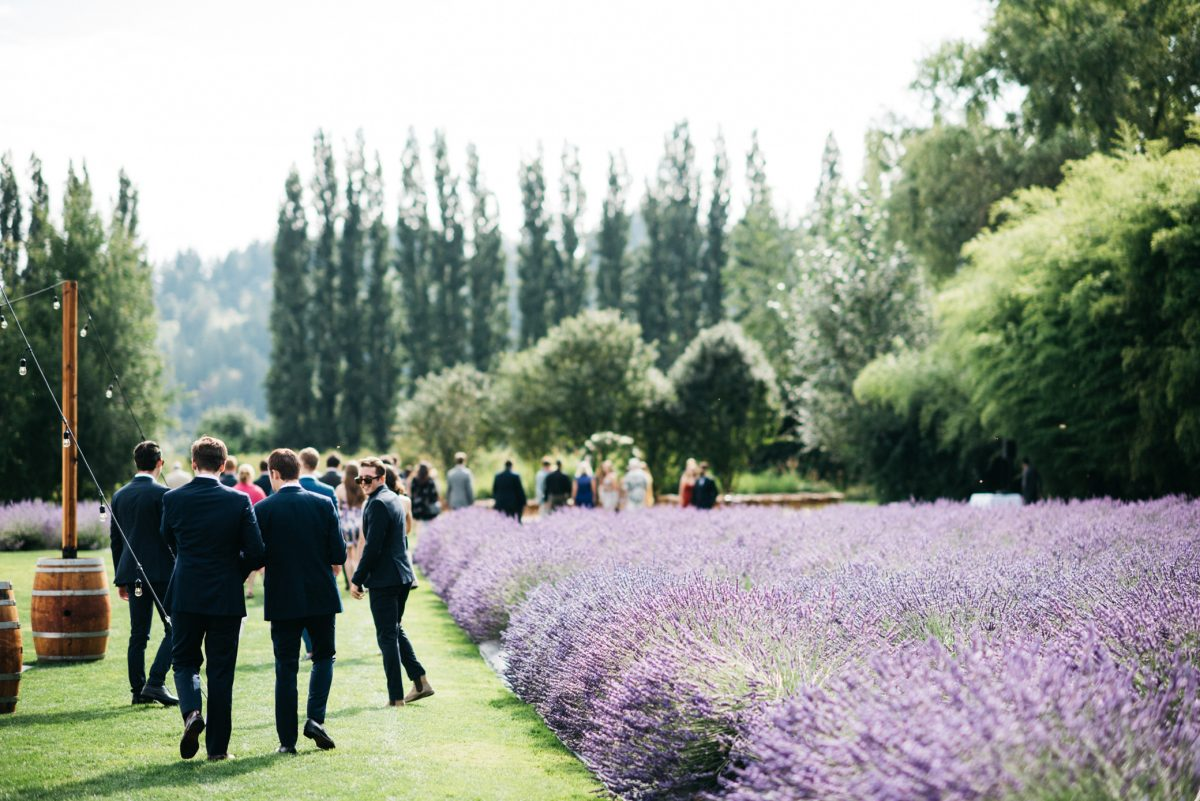 Weddings at Lavender Farms